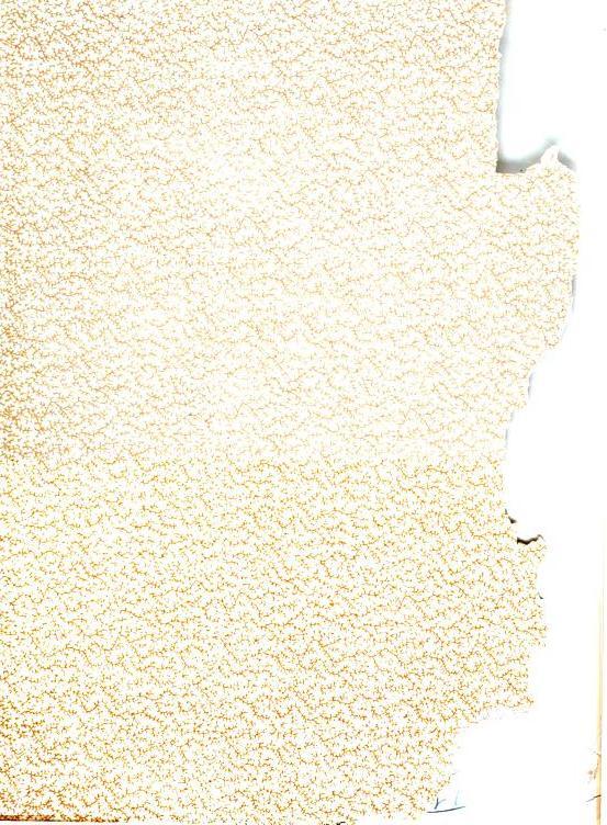 [graphic][graphic][graphic][graphic][ocr errors]